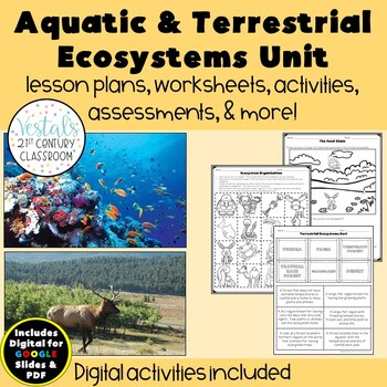 Aquatic & Terrestrial Ecosystems {Digital & PDF Included}