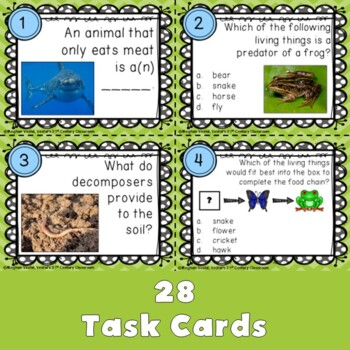 Food Chains Task Cards