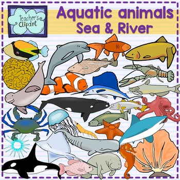 Aquatic animals (Ocean, Sea and river underwater life) clipart {Science}