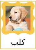 Arabic Flashcards - 25 Animals