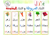 Arabic: Taa' Marboota and Taa' Maftooha | بزل التاء المربوطة والتاء المفتوحة