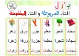 Arabic: Taa' Marboota and Taa' Maftooha | بزل التاء المربو