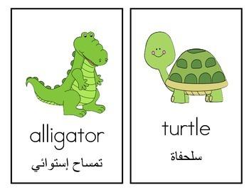 Arabic and English Bilingual Animals Write the Room #2!