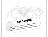Arachne  - Greek Myth graphic organizers