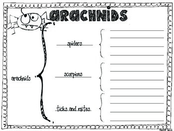 Arachnid mini pack {minibook, graphic organizers, response sheets}