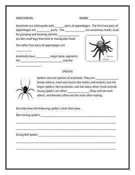 Arachnids Note Taking