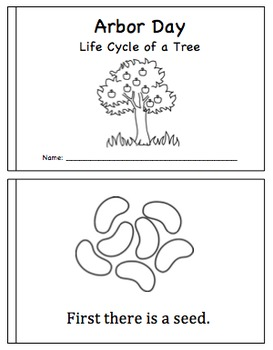 Arbor Day Mini Book- Life Cycle of a Tree