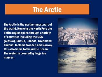 Arctic Animals PowerPoint | Arctic Habitat PowerPoint