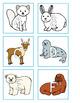 Arctic Alphabet Centers