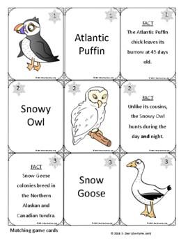 Arctic Animal Card Matching Game