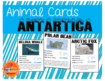 Arctic Animal Cards