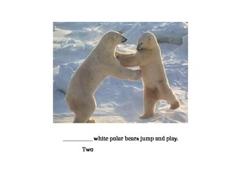 Arctic Animal Counting Book