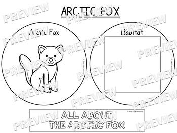 Arctic Animal Factballs and Information Sheets