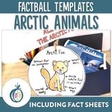 Arctic Animal Factballs and Information Sheets