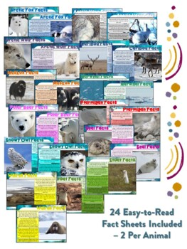 Arctic Animal Flipbooks and Information Sheets