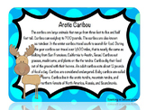 Arctic Animal Informational Text and Comprehension Questions, Game