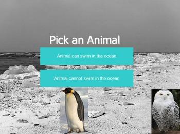 Polar Animals Dichotomous Key