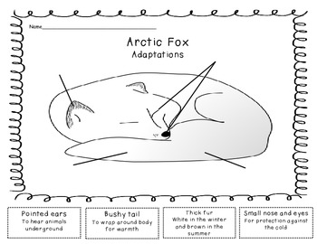 Arctic Animals: A Nonfiction Literacy & Math Common Core Unit