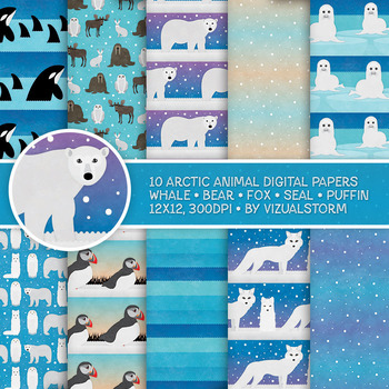 Arctic Animal Patterns, 10 Handmade Antarctica Winter Habitat Backgrounds