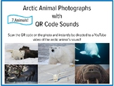 Arctic Animal Pictures & Sounds with QR Codes, Active Listening, Music Activity