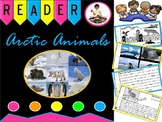 Arctic Animals Reader   Nonfiction Guided Reading Book   Winter   Text Features