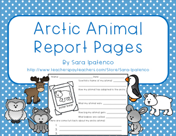 Arctic Animal Report Pages