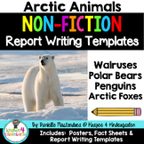 Arctic Animal Reports- Informational Non-Fiction Report Writing
