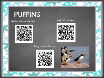 Arctic Animal Research Cards with QR codes