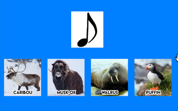 Arctic Animal Sound Game [ Windows OS Only ]