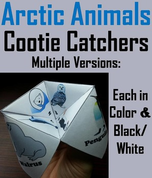 Arctic Animals Activity: Polar Bear, Reindeer, Whale, Snowy Owl, Etc.