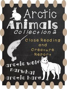 Arctic Animals 2 - Close Reading and Creature Report