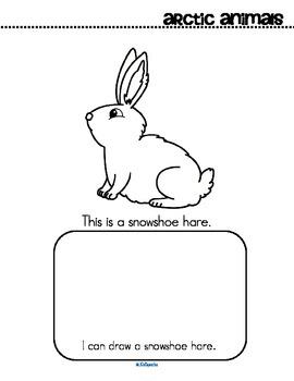 Arctic Animals Activity Printables for Preschool