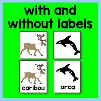 Arctic Animal Graphing Card Math Center
