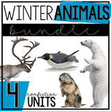 #bundleupwithtpt Winter Animals Bundle