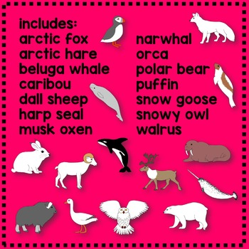 Arctic Animal Match and Clip Math Center