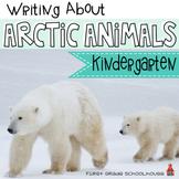 Writing About Arctic Animals Kindergarten