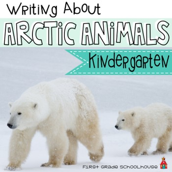 Writing About Arctic Animals Kindergarten