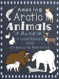 Arctic Animals-A Bundle of 9 different Close Reads and Reports