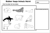 Arctic Animals - Blubber Experiment