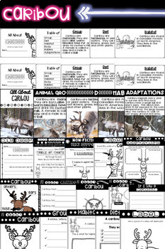Arctic Animals BUNDLE - Informational Text, Reading, Writing, & Research