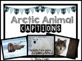 Captions - Arctic Animals Captions and 8 Non-Fiction Text Feature Posters