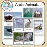 Arctic Animals Cards