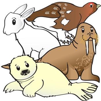 Arctic Animals Clip Art - Polar Creatures