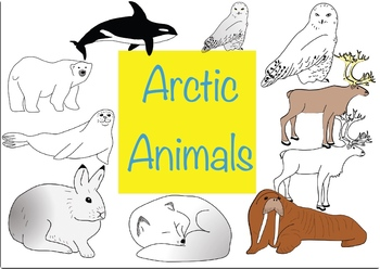 Image result for arctic animals clipart