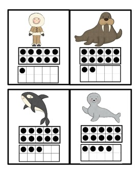 Polar Animals Count the Room