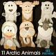 Arctic Animals Crafts