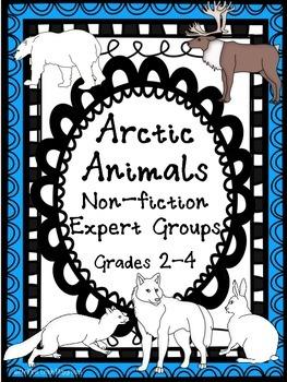 Arctic Animals: Expert Groups