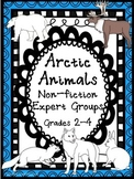 Arctic Animals: Expert Groups