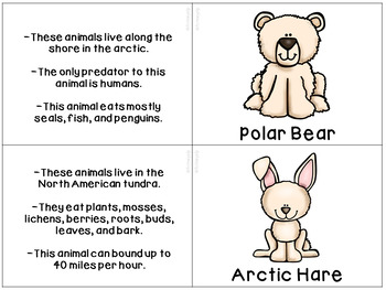 Arctic and Antarctic Animals Fast Facts