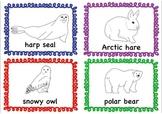 Arctic Animals Flashcard Bundle